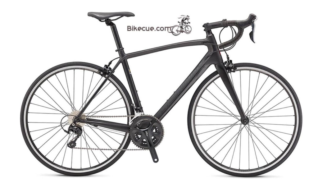 Schwinn Fastback Carbon Performance Road Bike
